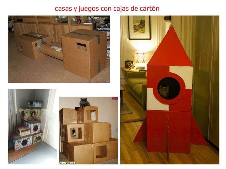 Casas y juegos de cartón para gatos. Vídeo de 3 juegos de enriquecimiento ambiental gatos.