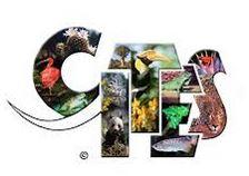 Logo CITES.