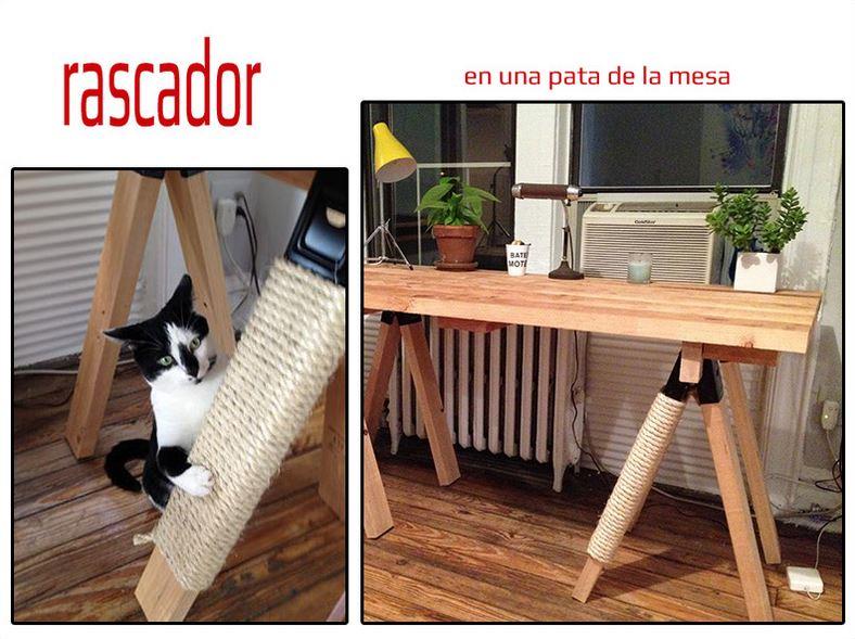 Rascador hecho con la pata de una mesa. Vídeo de 3 juegos de enriquecimiento ambiental gatos.