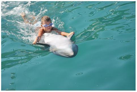 niño y delfín jugando