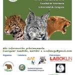 XIX jornadas grandes felinos. enriquecimientoambiental.com