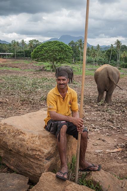 Cuidador de elefantes. enriquecimientoambiental.com