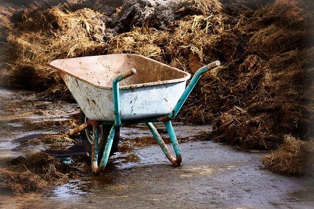 Carretilla. enriquecimientoambiental.com