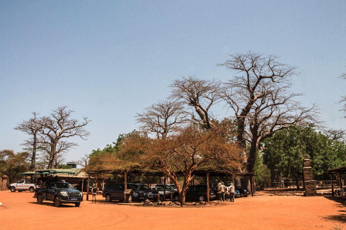 Reserva de Bandia.