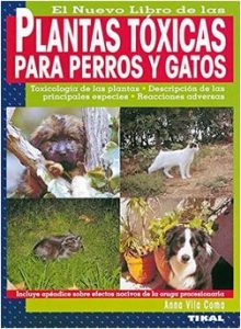 Plantas tóxicas perros y gatos.