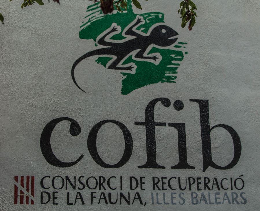 Consorci de Recuperació de la Fauna de les Illes Balears (COFIB).