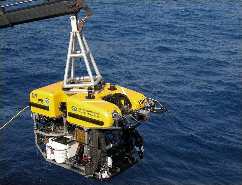 El tiburón fantasma fue descubierto por un ROV.