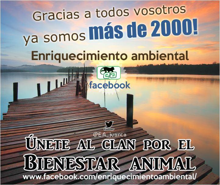 Pincha en la imagen y dale a me gusta a la mejor página de bienestar animal de facebook.
