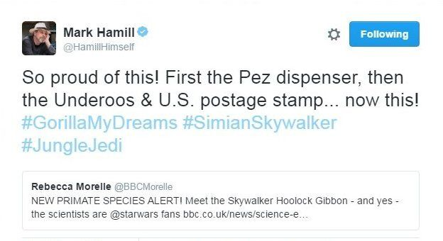El actor Mark Hamill twittó la noticia.