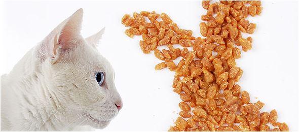 Snacks para gatos de calidad.