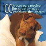 Resolver problemas de conducta de tu perro