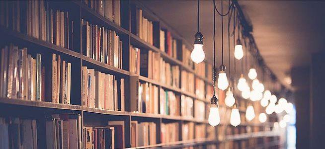 Los mejores libros de enriquecimiento ambiental recomendados por nosotros.